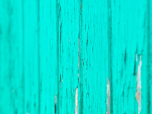Caribbean turquoise of Bimini on Queens Highway, the Bahamas.