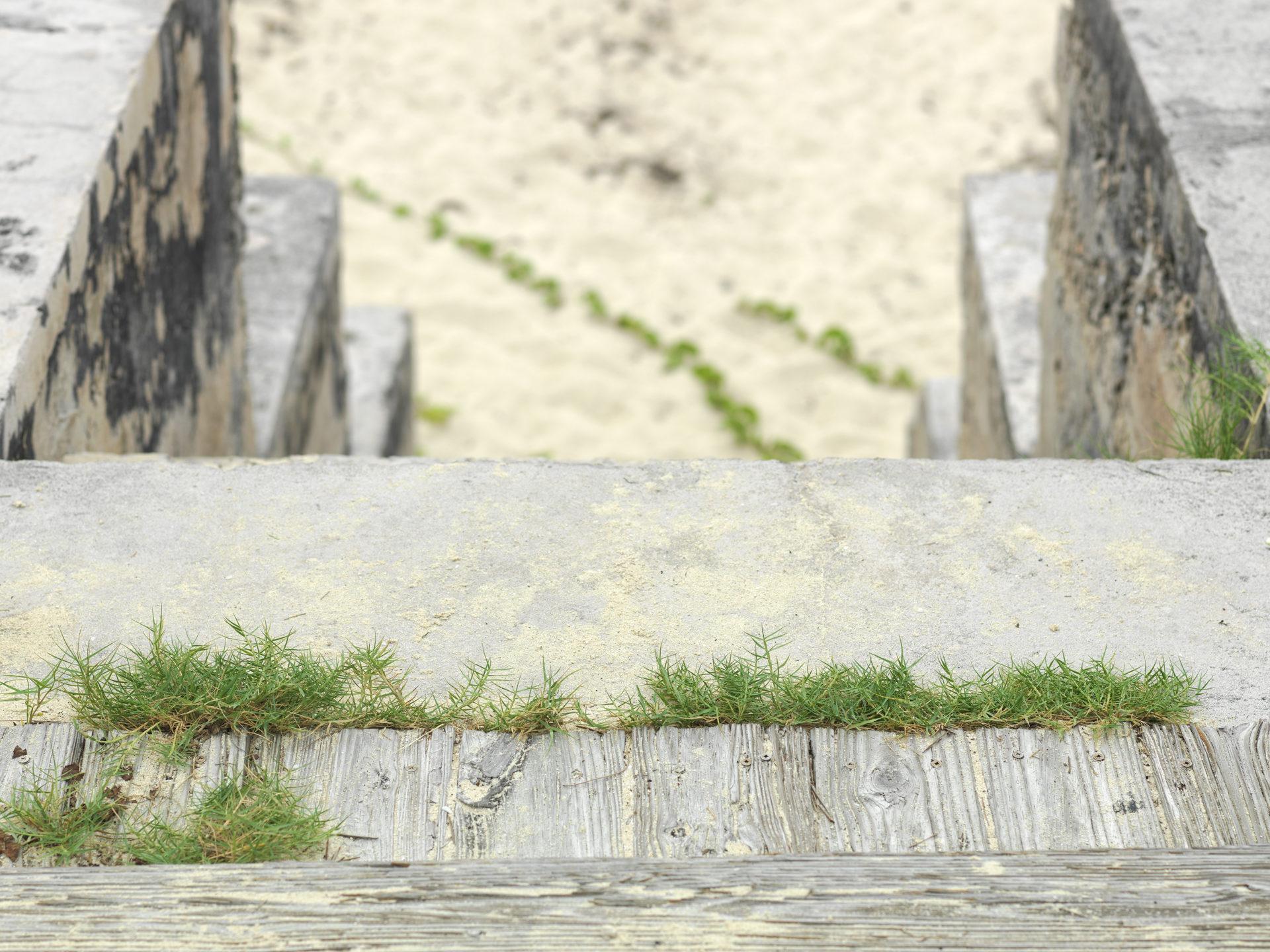 Caribbean stone steps to the beach on Bimini, The Bahamas.